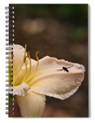 Lily With Fly Spiral Notebook