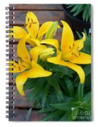 Lily Yellow Flower Spiral Notebook