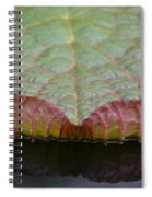 Lilypad Abstract Spiral Notebook