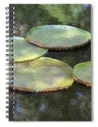 Lilypad Quads Spiral Notebook