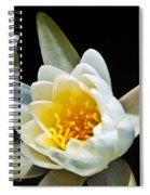 Lilypad Spiral Notebook