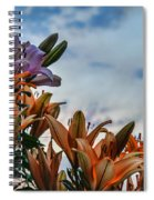 Lilys At La Fonda Spiral Notebook