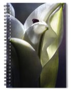 Lily's Eve Spiral Notebook