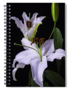 Lily's In Bloom Spiral Notebook