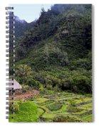 Limahuli Taro Fields In Kauai Spiral Notebook