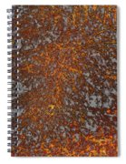 Limbinosity Spiral Notebook