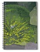 Limon Arcs Spiral Notebook