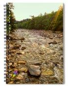 Lincoln Woods Sunstar Spiral Notebook