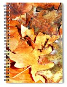 Lines Of Fall Spiral Notebook