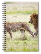 Lion Couple Spiral Notebook