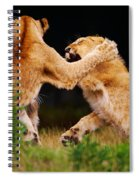 Lion Cubs Playing In The Grass Spiral Notebook
