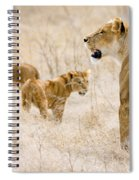 Lion Family Spiral Notebook