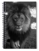Lion Going For A Haircut Spiral Notebook