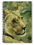 Lion Looking Back Spiral Notebook