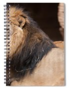 Lion Portrait Of The King Of Beasts Spiral Notebook