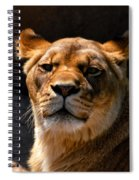 Lioness Hey Are You Looking At Me Spiral Notebook