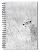 Lioness In Black And White Spiral Notebook