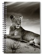 Lioness On Desert Dune Spiral Notebook