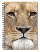 Lioness Portrait Spiral Notebook
