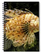 Lionfish Searching For Its Prey Spiral Notebook