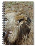 Lions Head Spiral Notebook