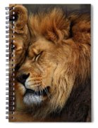 Lions In Love Spiral Notebook
