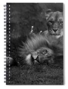 Lions Me And My Guy Spiral Notebook