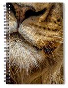 Lions Mouth 2 Spiral Notebook