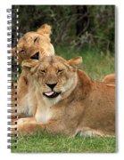 Lions Of The Masai Mara  Spiral Notebook
