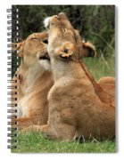 Tenderness In The Wild Spiral Notebook