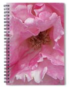 Lips Of A Rose Spiral Notebook