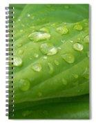 Liquid Diamonds Spiral Notebook