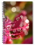 Liquid Light Spiral Notebook