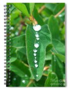 Liquid Lineup Spiral Notebook