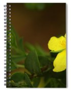 Lit Flower Spiral Notebook