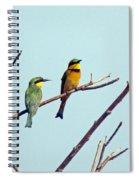 Little Bee-eaters Spiral Notebook