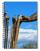 Little Bird On Tall Dead Saguaro Spiral Notebook