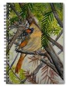 Little Birdie Spiral Notebook