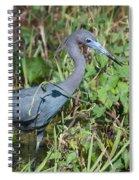 Little Blue Heron 2 Spiral Notebook
