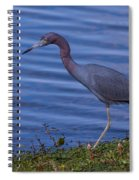 Little Blue Strut Spiral Notebook