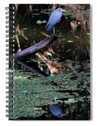 Little Blue Times Two Spiral Notebook