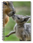 Little Cavy With Mother Spiral Notebook