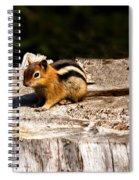 Little Chipmunk Spiral Notebook