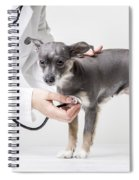 Little Dog At The Vet Spiral Notebook