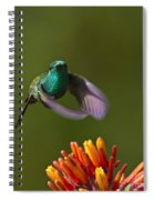 Little Hedgehopper Spiral Notebook