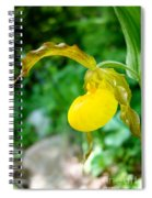 Little Lady Slipper Spiral Notebook