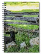 Little Lamb Spiral Notebook