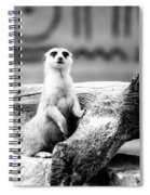 Little Meerkat Spiral Notebook
