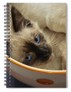 Little Miss Blue Eyes Spiral Notebook