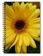 Little Miss Sunshine Spiral Notebook